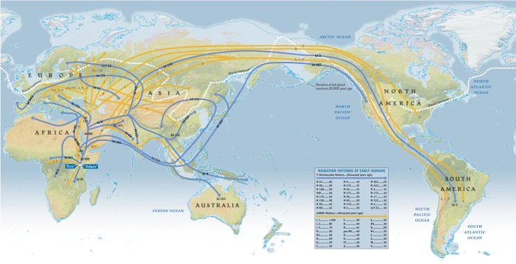 National Geographic Maps, Atlas of the Human Journey